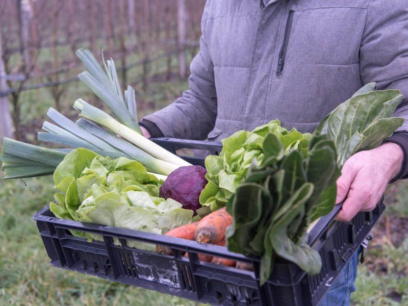 Kan ik het groente en fruit van Bioboer Giel combineren?